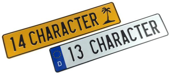 13 & 14 Character